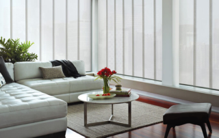skyline vertical blinds 2