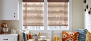 Introducing You to Window Blinds